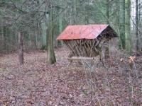 polowanie-wigilijne-019