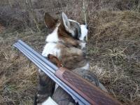 polowanie-wigilijne-035