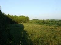 polowanie-na-rogacza-002